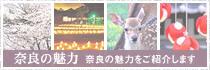 奈良の魅力